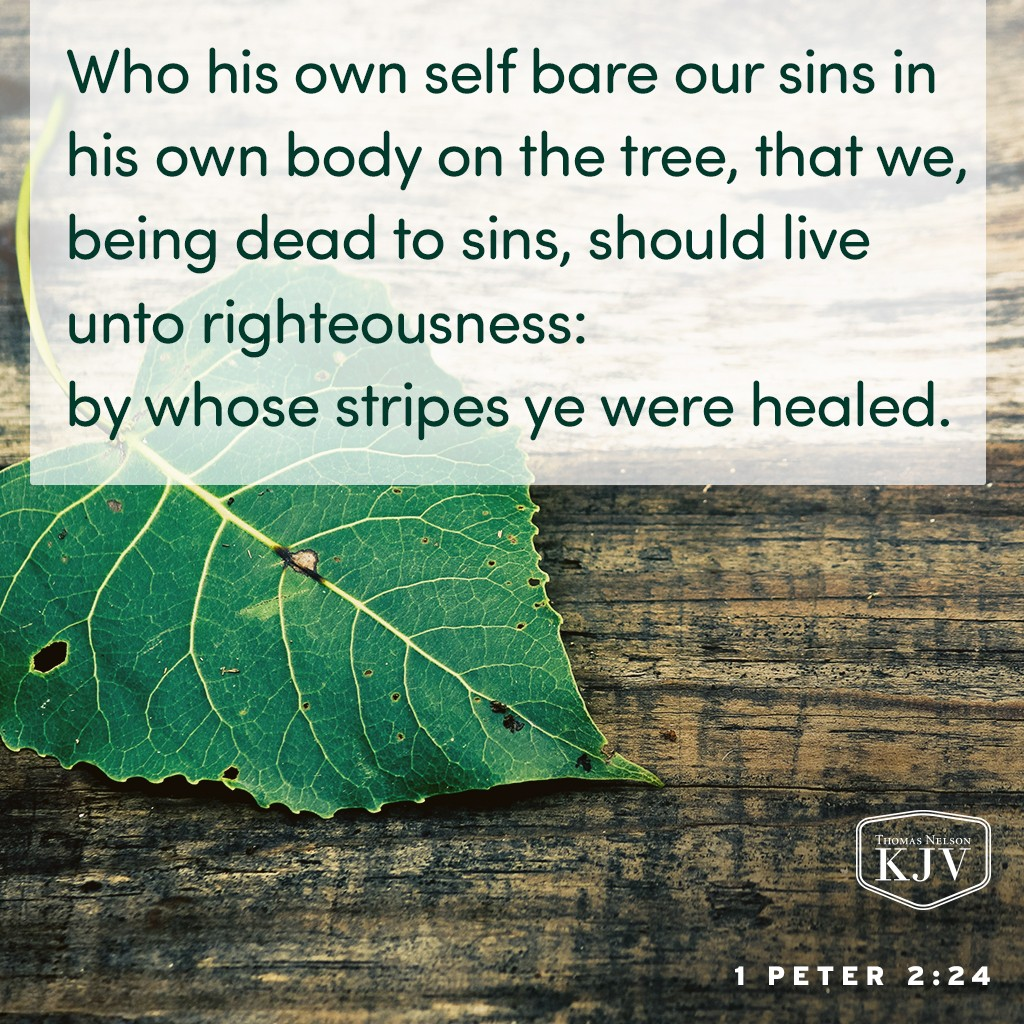 24 Who his own self bare our sins in his own body on the tree, that we, being dead to sins, should live unto righteousness: by whose stripes ye were healed. 1 Peter 2:24