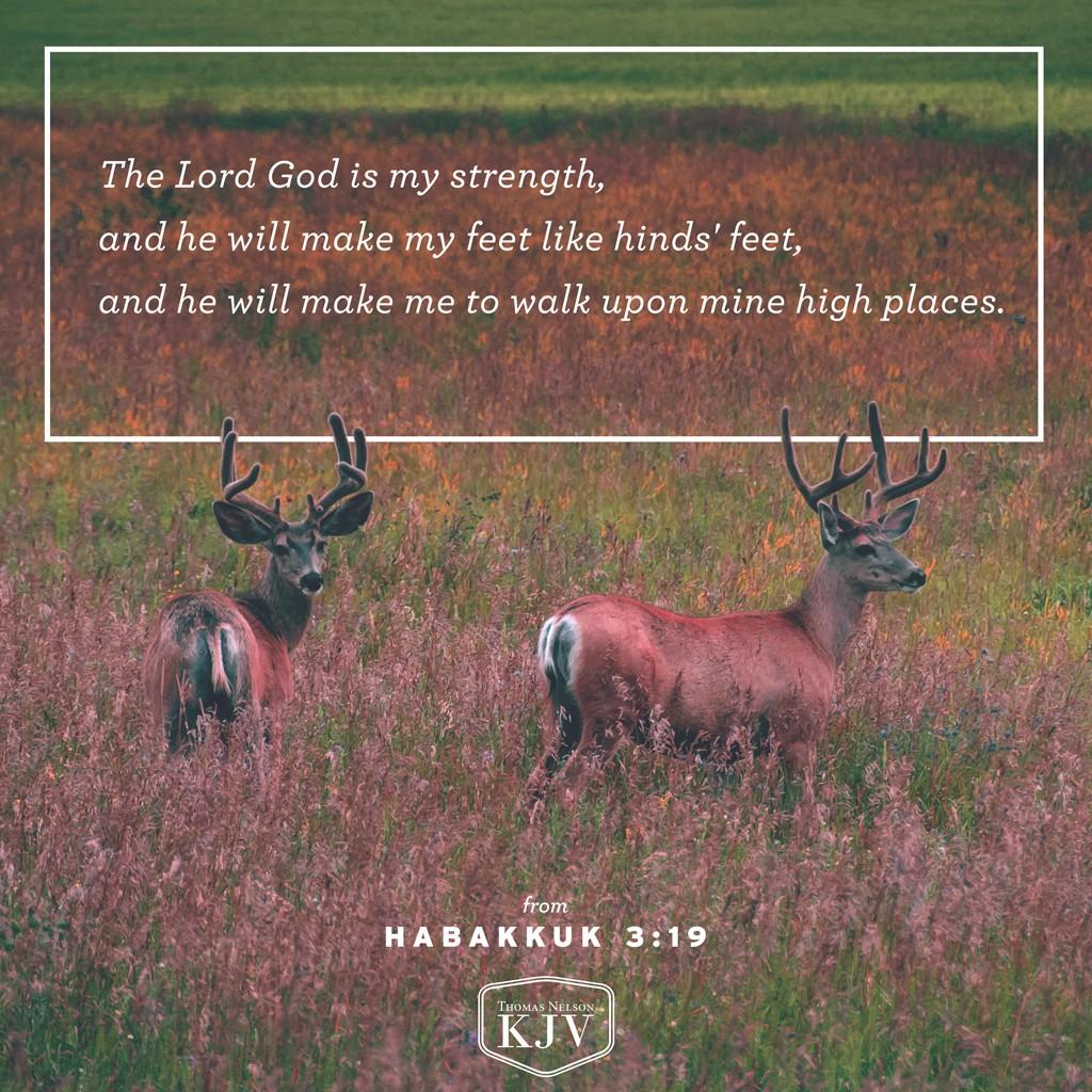 KJV Verse of the Day: Habakkuk 3:19