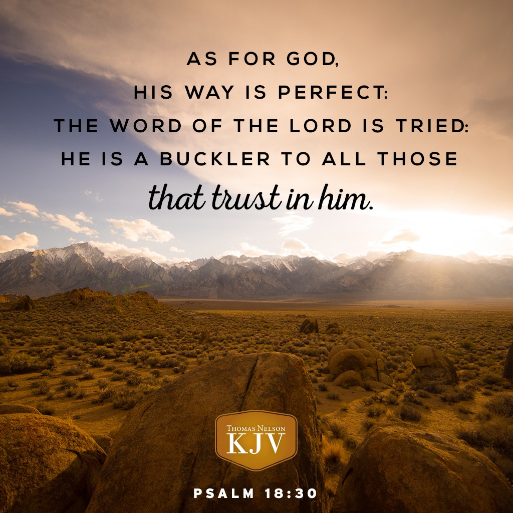 Kjv Verse Of The Day Psalm 18 30