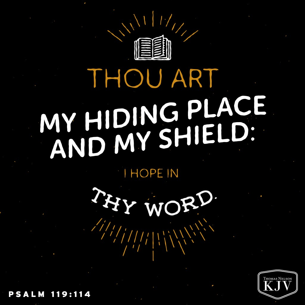 114 Thou art my hiding place and my shield: I hope in thy word. Psalm 119:114