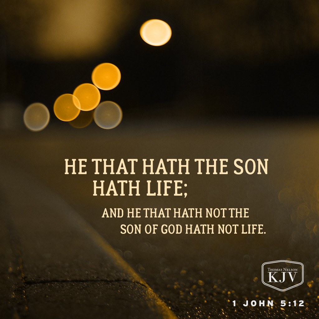 12 He that hath the Son hath life; and he that hath not the Son of God hath not life. 1 John 5:12