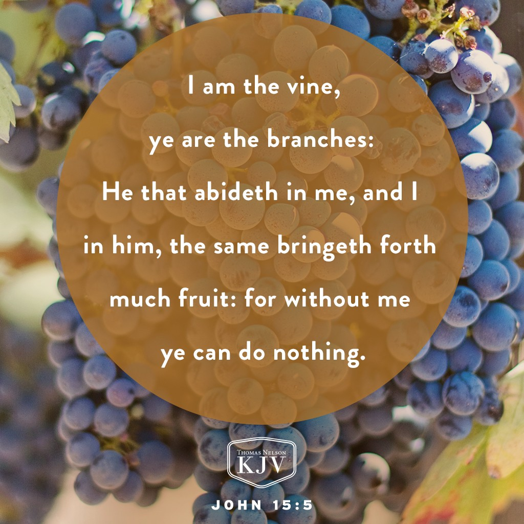5 I am the vine, ye are the branches: He that abideth in me, and I in him, the same bringeth forth much fruit: for without me ye can do nothing. 6 If a man abide not in me, he is cast forth as a branch, and is withered; and men gather them, and cast them into the fire, and they are burned. 7 If ye abide in me, and my words abide in you, ye shall ask what ye will, and it shall be done unto you. 8 Herein is my Father glorified, that ye bear much fruit; so shall ye be my disciples. John 15:5-8