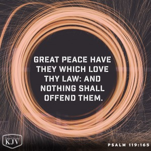 Kjv Verse Of The Day Psalm 119 165