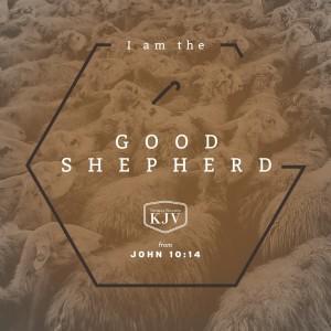 KJV Verse of the Day: John 10:14-15