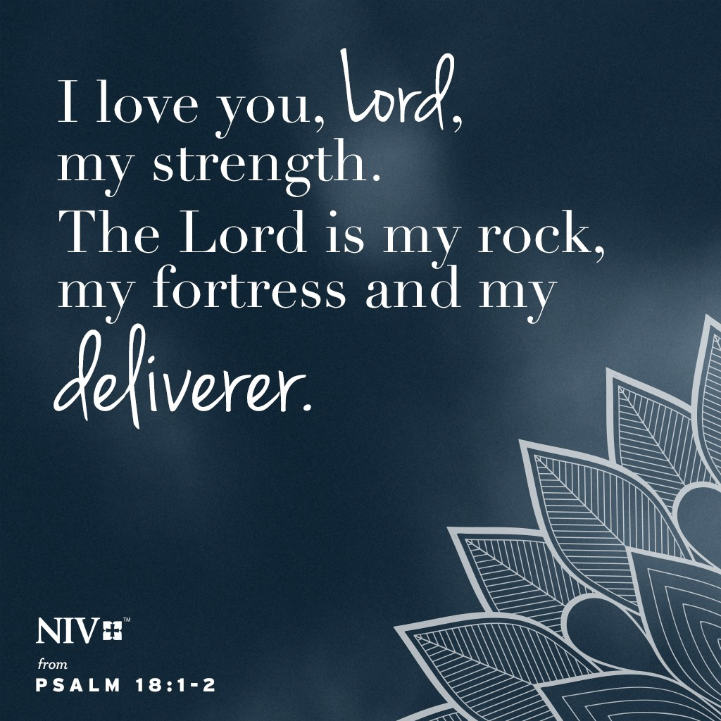 NIV Verse of the Day: Psalm 18:1-2