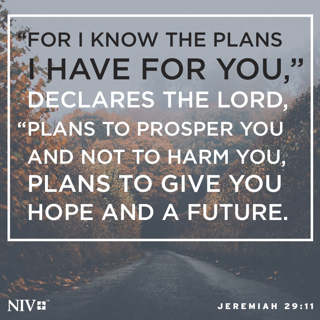 niv verse of the day jeremiah 29 11