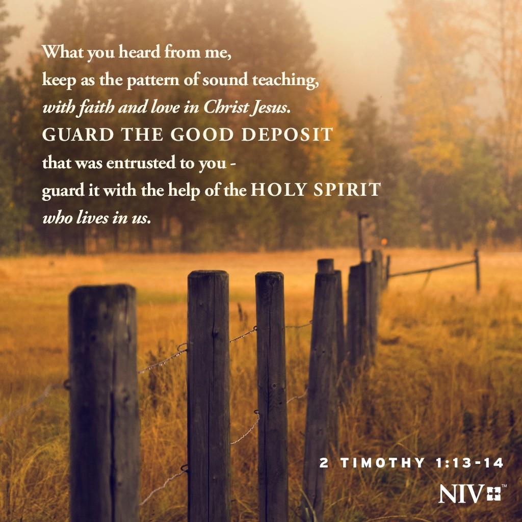 NIV Verse of the Day: 2 Timothy 1:13-14