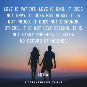 niv verse of the day 1 corinthians 13 4 5