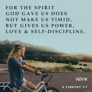 NIV Verse of the Day 2 Timothy